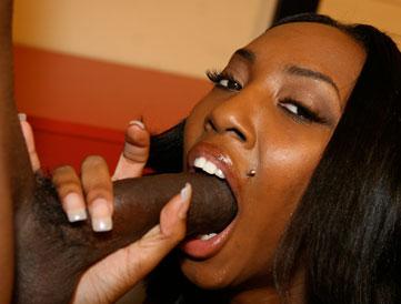 black mporn Black Free Porn Videos - Cumlouder.com.